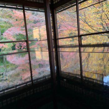 秋・初冬の京都trip(週末利用の短い旅へ) ~瑠璃光院~